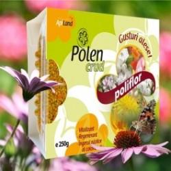 Polen CRUD Poliflor 250g BIO - Apiland