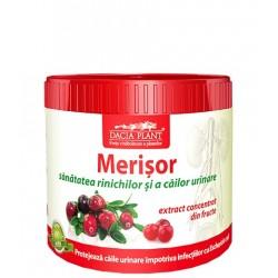 Merisor (pulbere) - Dacia Plant