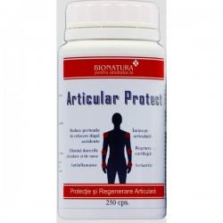 Articular Protect