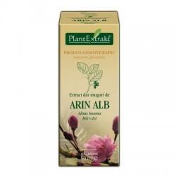 Extract din muguri de ARIN ALB 50ml