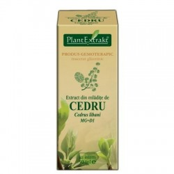 Extract din mlădiţe de CEDRU 50ml