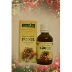 Extract din mladite de Paducel - 50 ml