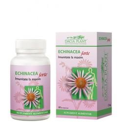 Echinacea forte - Dacia Plant