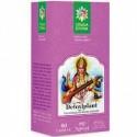 Detoxiplant - Santo Raphael