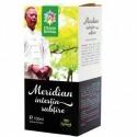 Meridian Intestin Subtire - Santo Raphael