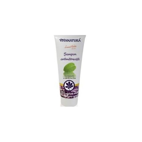 Șampon Antimătreață - VivaNatura