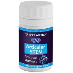 Articular Stem - Herbagetica 30 cps