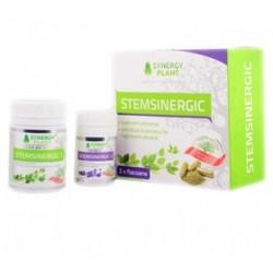 Stem Sinergic - Synergy Plant