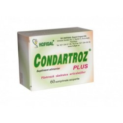 Condartroz Plus - Hofigal