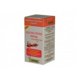 Ulei de catina 600 mg - Hofigal
